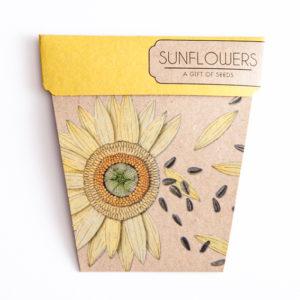 SnS_Sunfower_Front